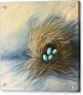 April Nest Acrylic Print
