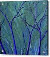 Aqua Forest Acrylic Print