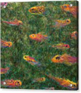 Aquarium Acrylic Print by James W Johnson