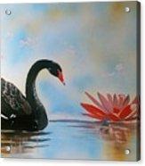 Aqueous Blossom  Acrylic Print