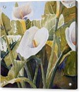 Aram Lillies Acrylic Print