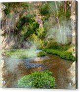 Aravaipa Creek Acrylic Print