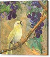 Arbor Song Acrylic Print