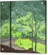 Arboretum Path Acrylic Print