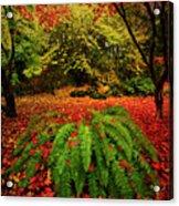 Arboretum Primary Colors Acrylic Print