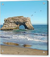 Arch In The Sea With Pelicans Flying By, At Natural Bridges State Beach, Santa Cruz, California Acrylic Print