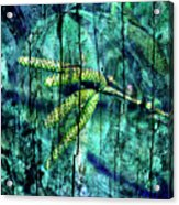 Archaic Blue Dream Acrylic Print