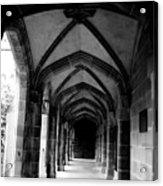 Arches Acrylic Print