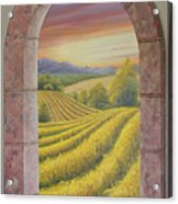 Arco Vinal Acrylic Print
