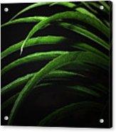 Arcs Of Green Acrylic Print