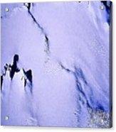 Arctic Fastness  Acrylic Print