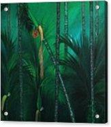 Areca Plam Acrylic Print