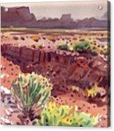 Arizona Arroyo Acrylic Print