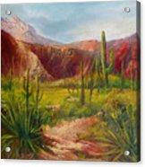 Arizona Beauty Acrylic Print