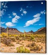 Arizona Desert #2 Acrylic Print