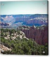 Arizona Desert Landscape Acrylic Print by Ryan Kelly