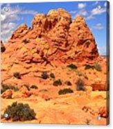 Arizona Elegance Acrylic Print