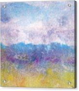 Arizona Impressions Acrylic Print