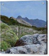 Arizona Sentinel Acrylic Print