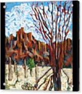 Arizona Trees In Blossom Acrylic Print