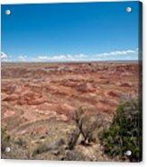 Arizona's Painted Desert Acrylic Print