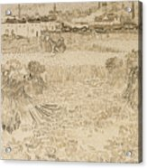 Arles View From The Wheatfields Acrylic Print