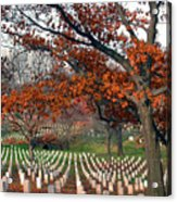 Arlington Cemetery In Fall Acrylic Print by Carolyn Marshall