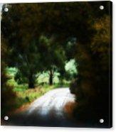 Around The Corner Acrylic Print