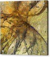 Arraignment Surface  Id 16097-222826-11240 Acrylic Print