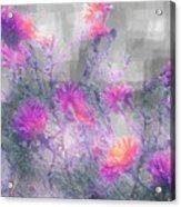 Arrangement In Plaid Acrylic Print