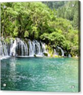 Arrow Bamboo Waterfall Acrylic Print
