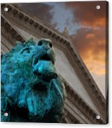 Art And Lions Acrylic Print
