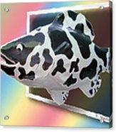 Art Fish Fun Acrylic Print