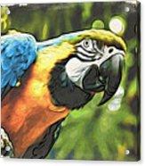 Art In Moku Hanga Style Acrylic Print