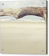 Art On The Beach Acrylic Print