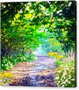 Art Rendered Country Pathway Acrylic Print