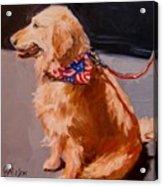 Art Show Dog 2 Acrylic Print