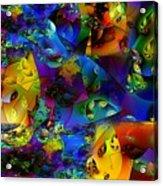 Arthropod Rainbow Acrylic Print