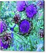 Artichoke Blues Acrylic Print