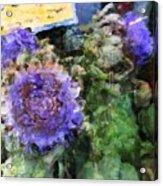 Artichoke Flowers Acrylic Print