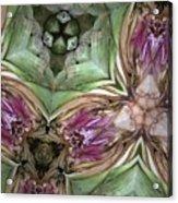 Artichoke Heart Acrylic Print
