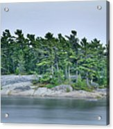 Artistic Granite And Trees  Acrylic Print
