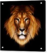 Artistic Lion Acrylic Print by Aimelle