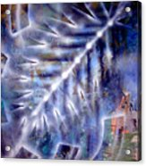 Artleigh Vii Acrylic Print