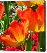 Artsy Tulips Acrylic Print