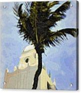 Aruba Palm Acrylic Print