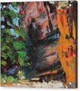 Ashdown Gorge Of Zion Acrylic Print