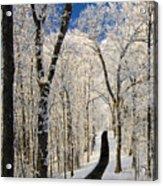 Asheville Nc - Winter Stroll Acrylic Print