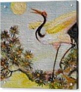 Asian Crane 3 Acrylic Print