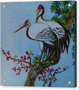Asian Cranes 4 Acrylic Print